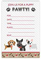 free-shih-tzu-birthday-cards