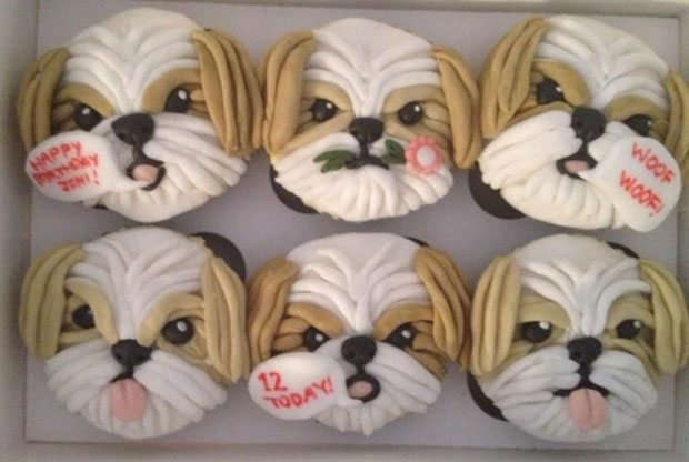 cupcakes-for-shih-tzu-birthday
