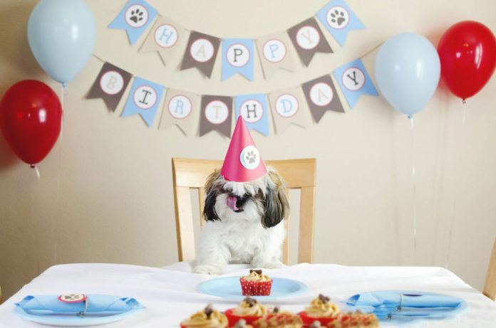 simple-birthday-party-decorations
