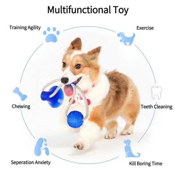 1-mutifuntion-teeth-cleaning-toy