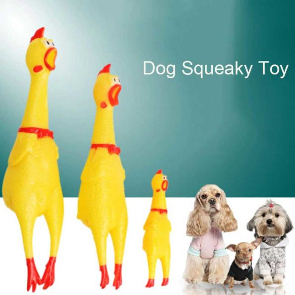 2-screaming-chiken-rubber-toy-dog-breeds