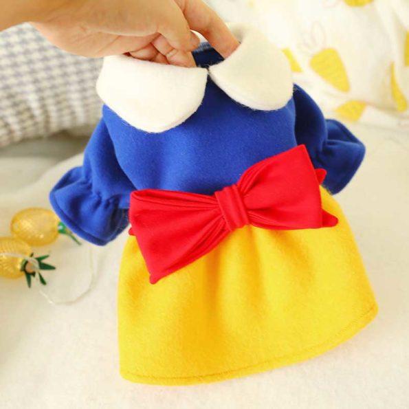 2-shih-tzu-warm-blue-yellow-dress