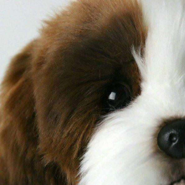 4.cute-fluffed-shih-tzu-toy-closeup