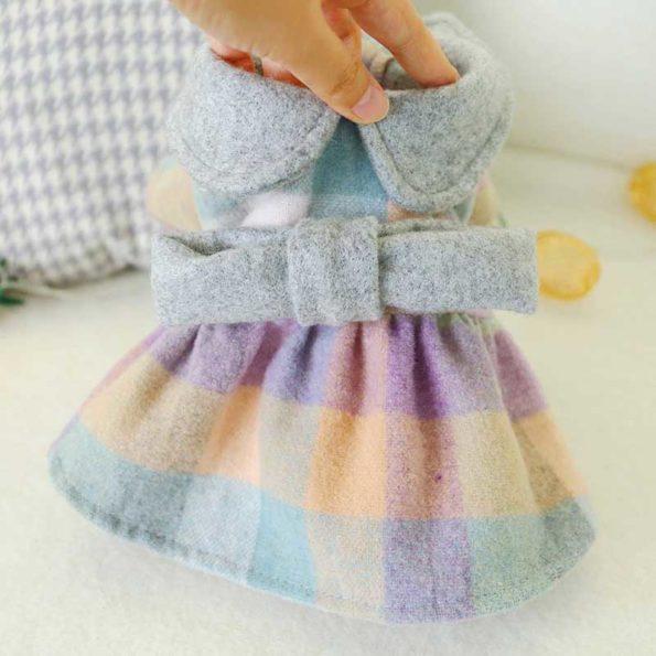 7-beautiful-shih-tzu-warm-grey-dress